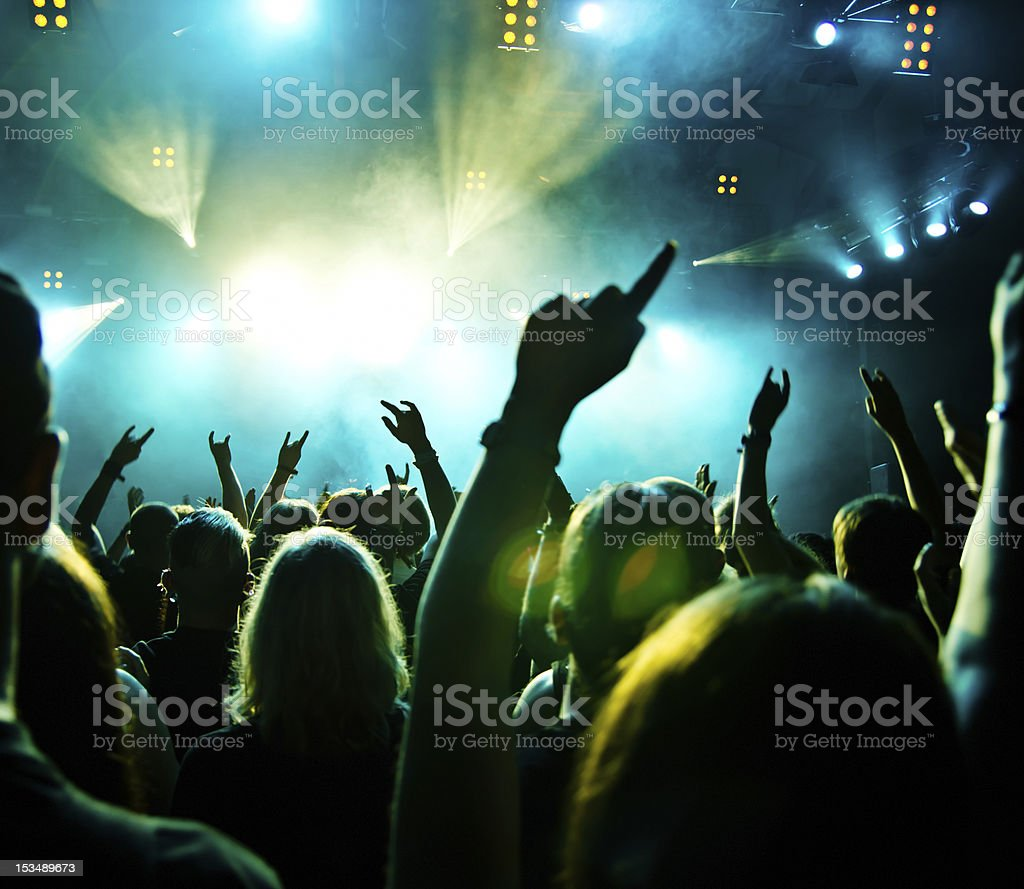 Concert Crowd in motion royalty-free stock photo