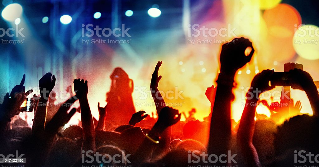 Concert crowd partying. stock photo