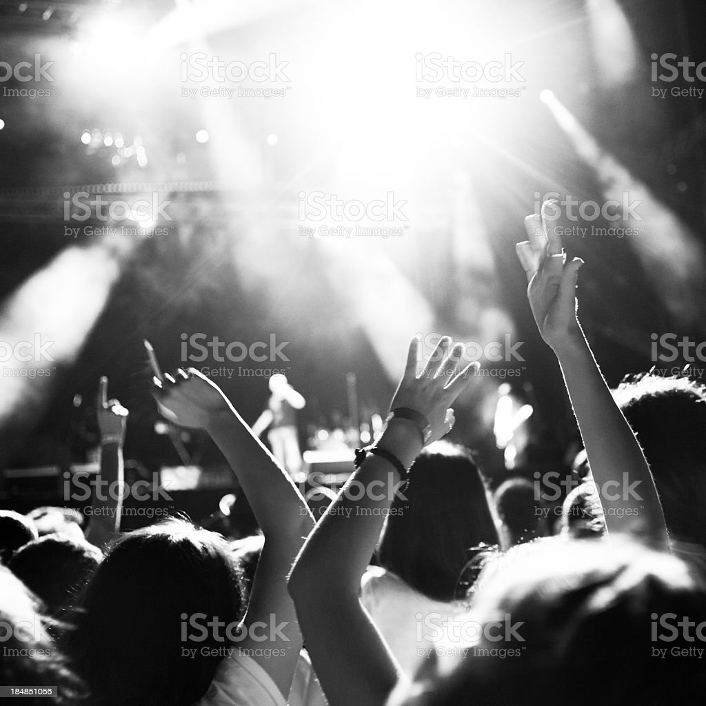 Concert crowd royalty-free stock photo