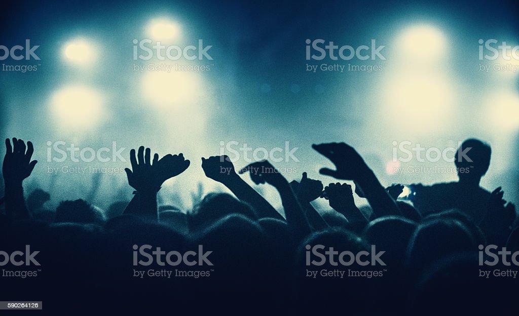 Concert crowd. stock photo