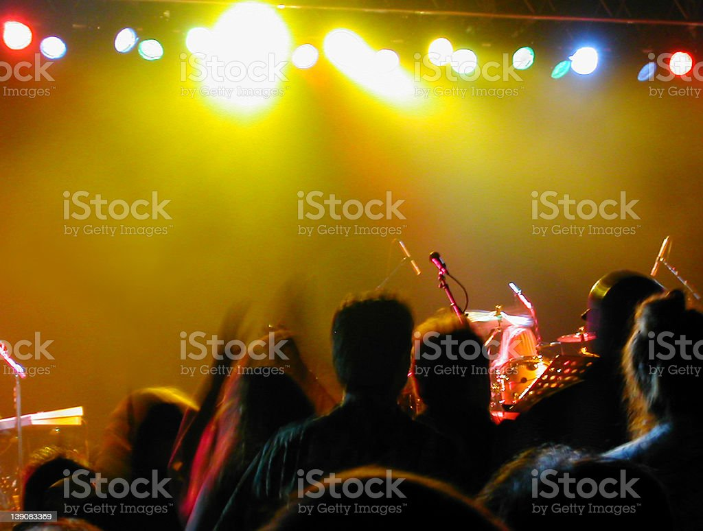 Concert Fans royalty-free stock photo