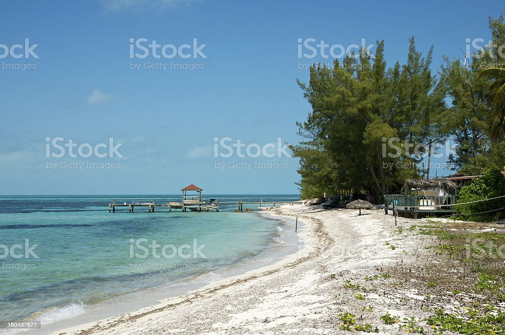 Conch Industry stock photo