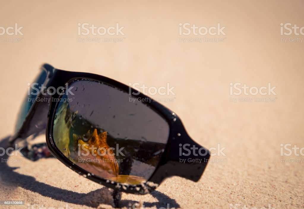conch shell reflects in sunglasses stock photo