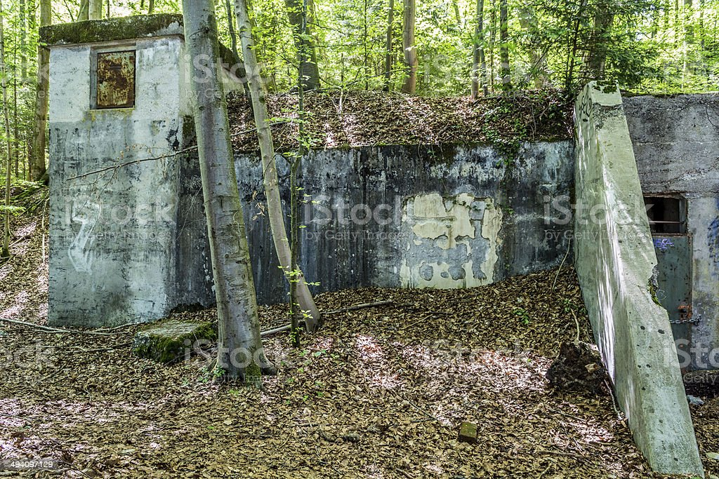 Concrete bunker in the woods stock photo