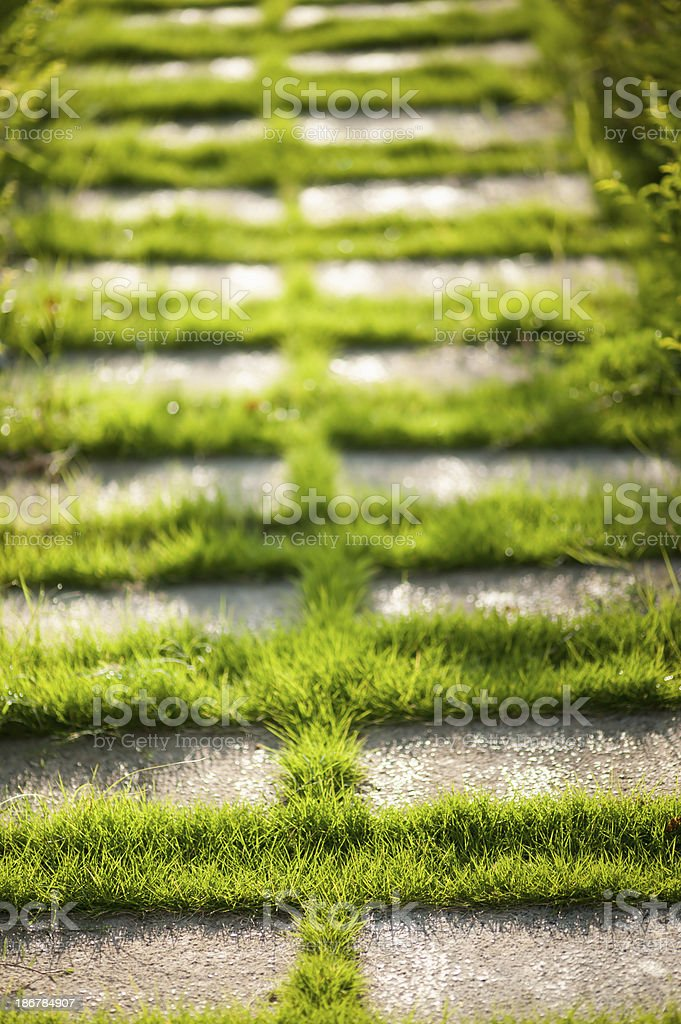 Concrete Floor with Green Grass stock photo