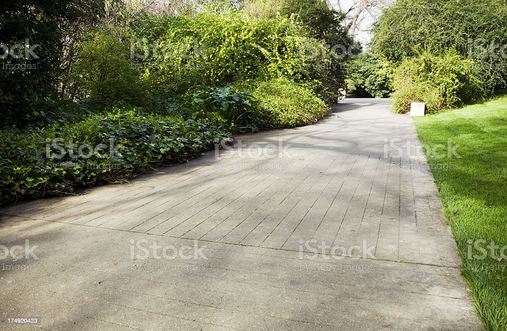 Concrete footpath in a garden royalty-free stock photo