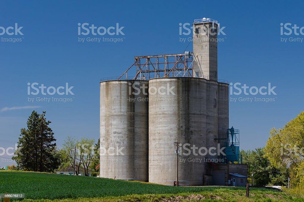 Concrete grain storage silos with elevator stock photo