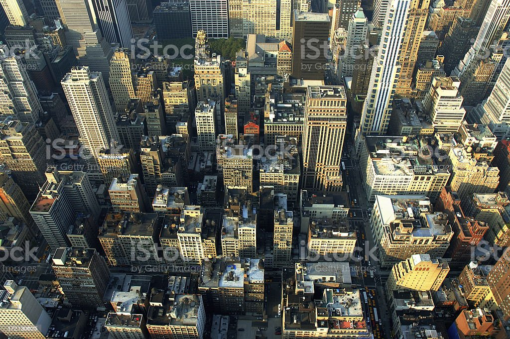 Concrete Jungle royalty-free stock photo