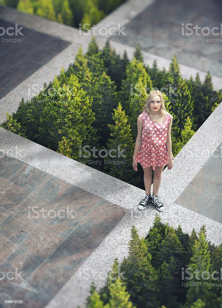 Concrete Vs Forest stock photo