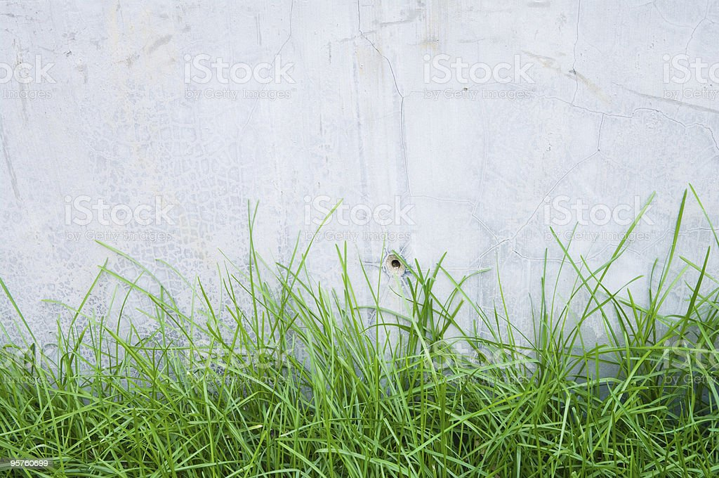 concrete walls and green grass stock photo