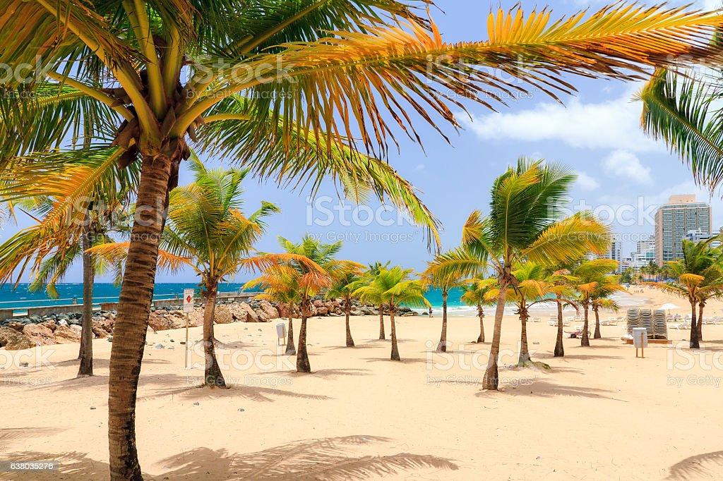 Condado beach stock photo