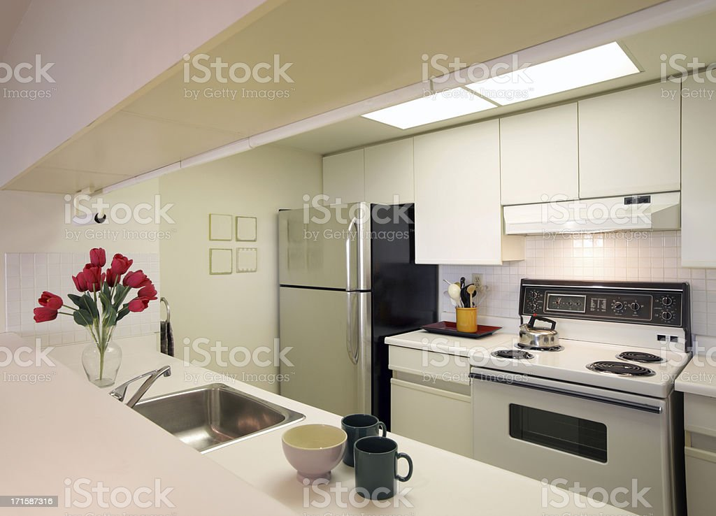 Condo Rental in Toronto royalty-free stock photo