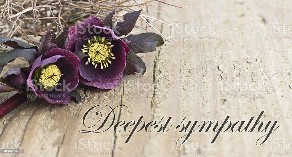 condolence card stock photo