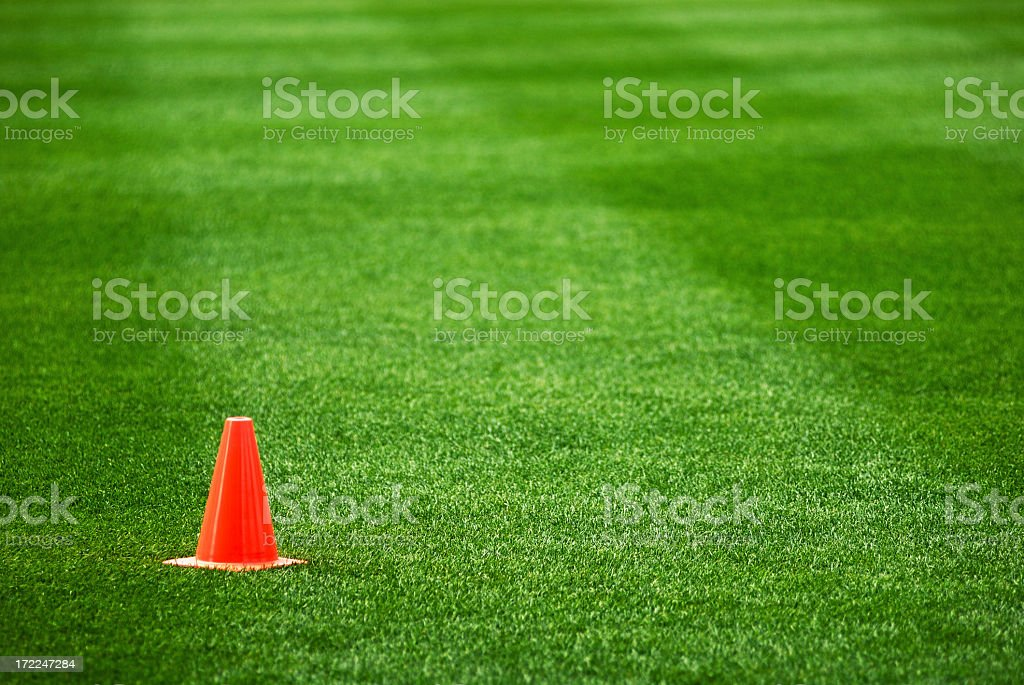 Cone on the grass stock photo