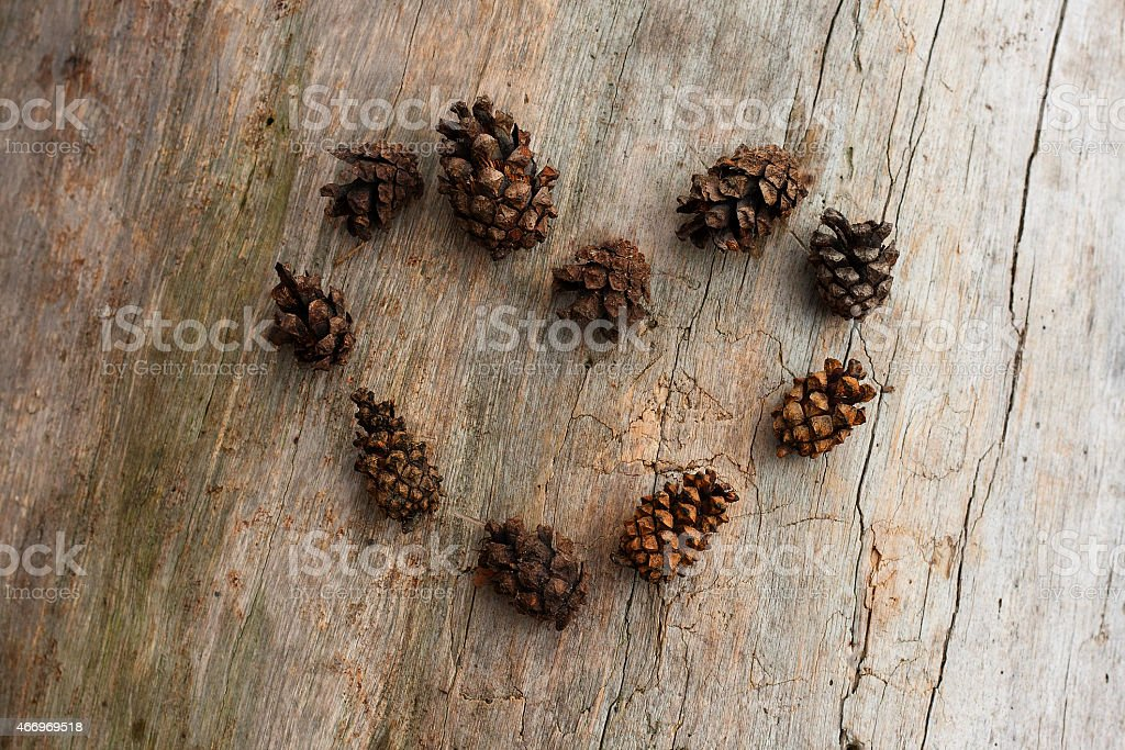 cones in the form of heart stock photo