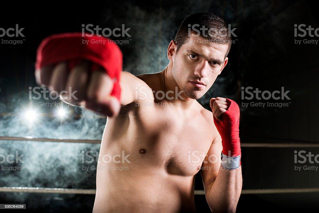Confident boxer. stock photo