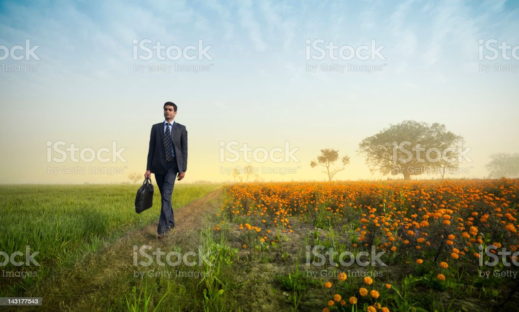 Confident Indian businessman with laptop bag walking in farm field royalty-free stock photo
