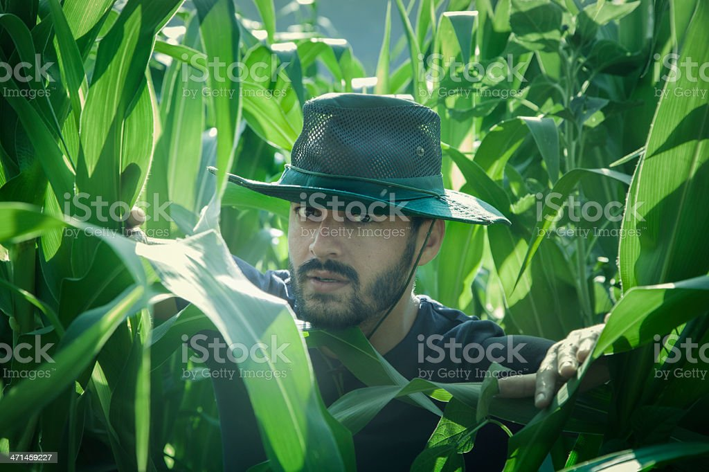 Confused Farmer in a Green Field royalty-free stock photo