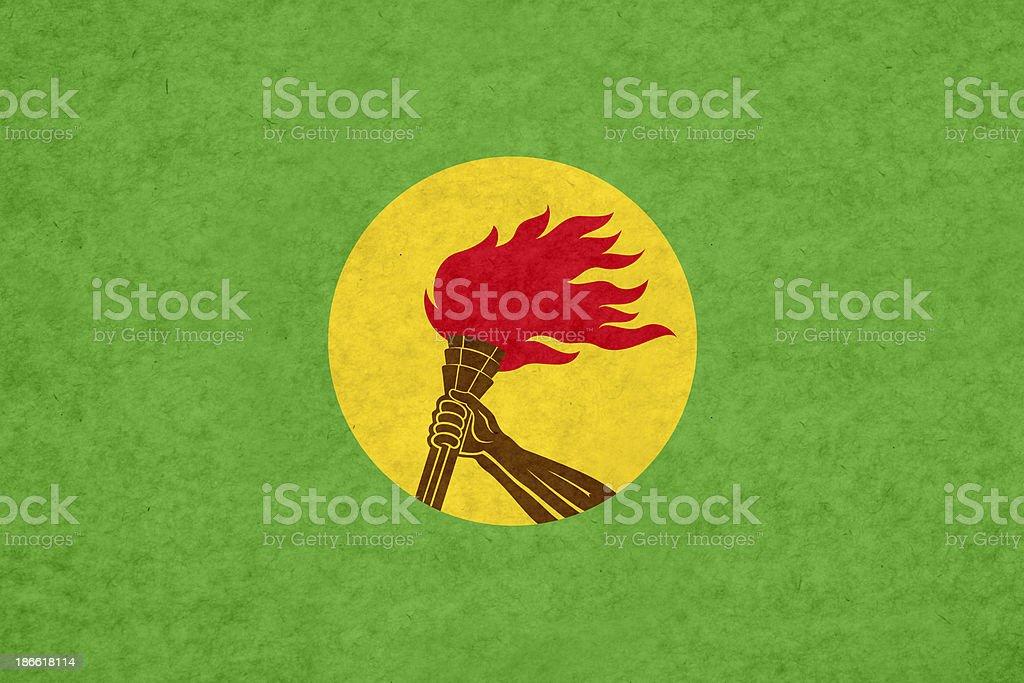 Congolese flag stock photo