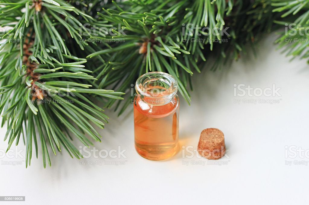 coniferous essential oil stock photo
