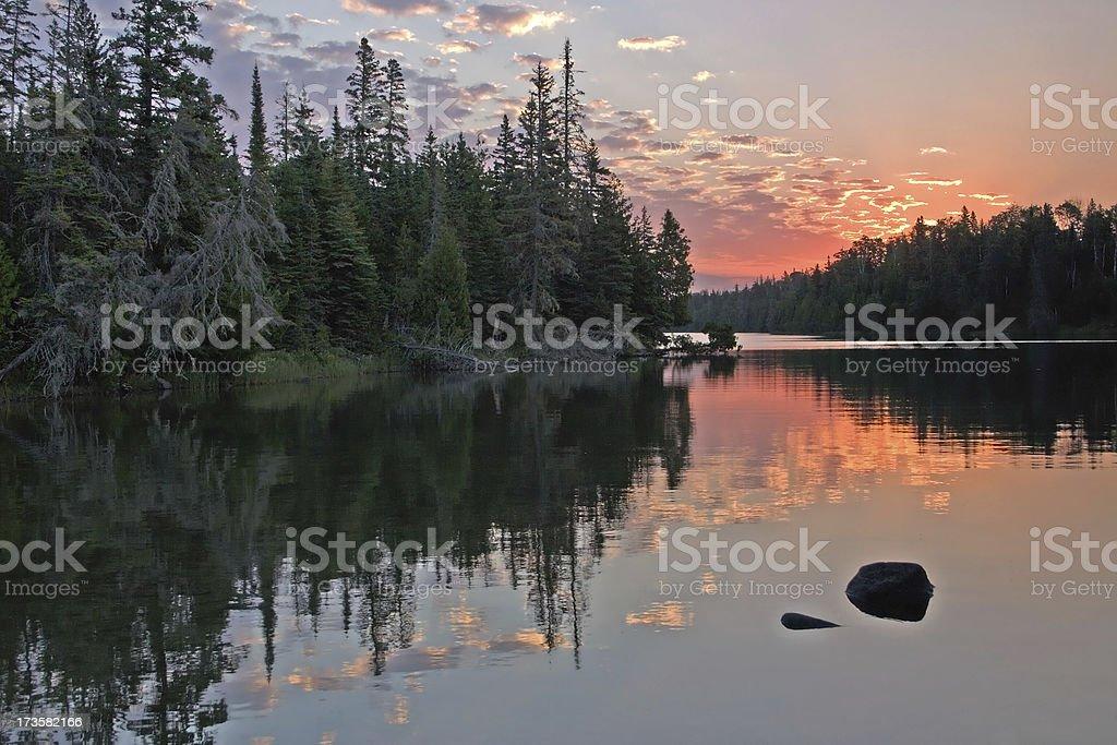 Coniferous Sunrise royalty-free stock photo