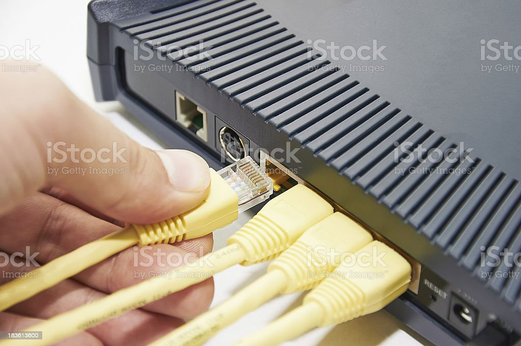 Connect cable to the network switch royalty-free stock photo