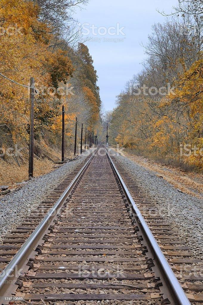 Conowingo Railroad Tracks And Phone Poles stock photo