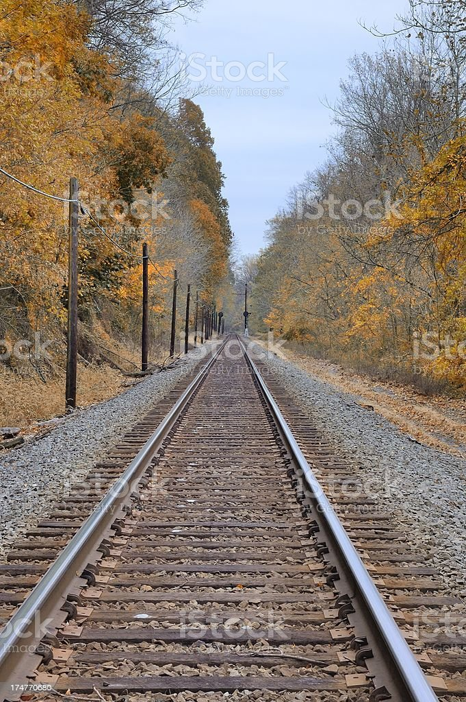 Conowingo Railroad Tracks And Phone Poles stock photo