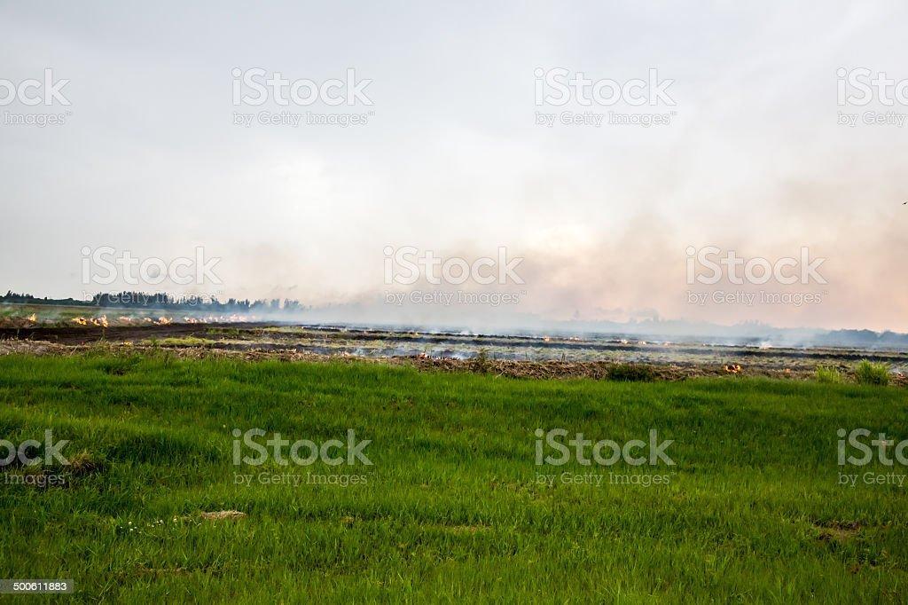 Conrtolled burn on farmland royalty-free stock photo
