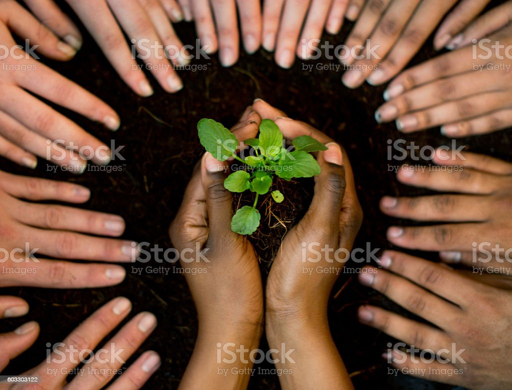 Conservation and collaboration stock photo