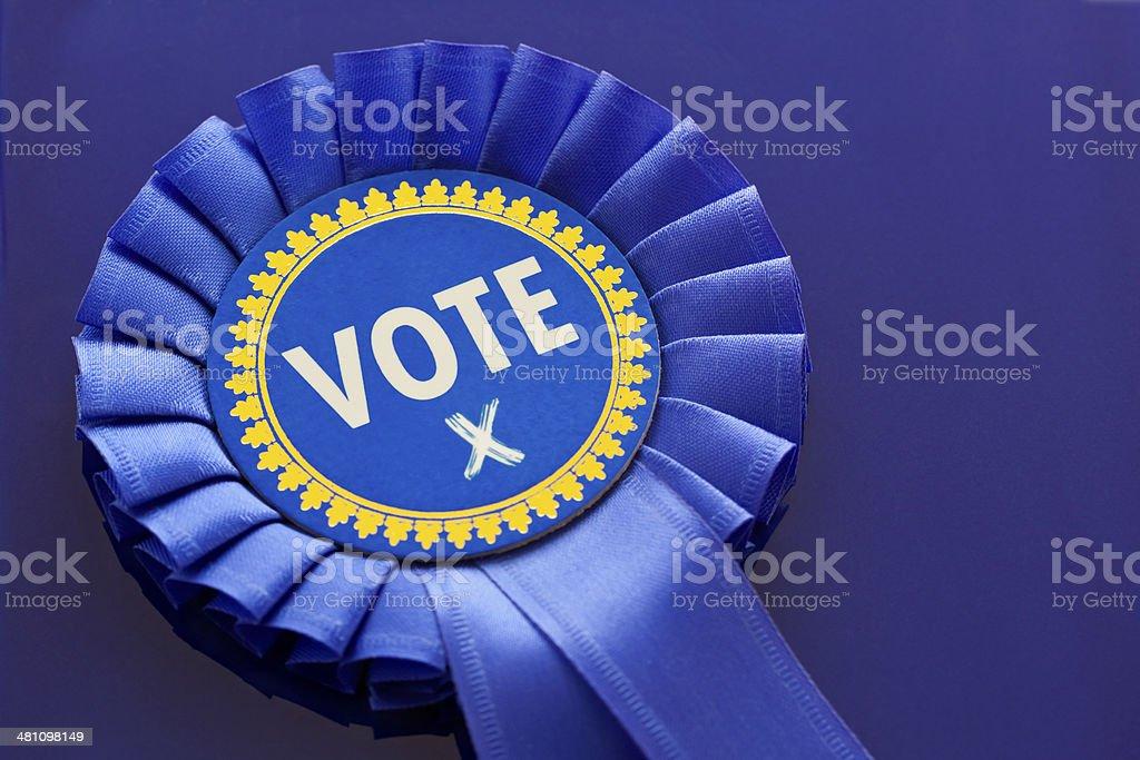Conservative Vote stock photo