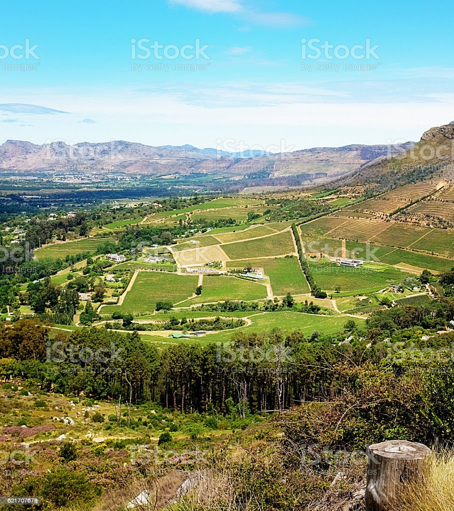 Constantia winelands in Cape Town, South Africa stock photo