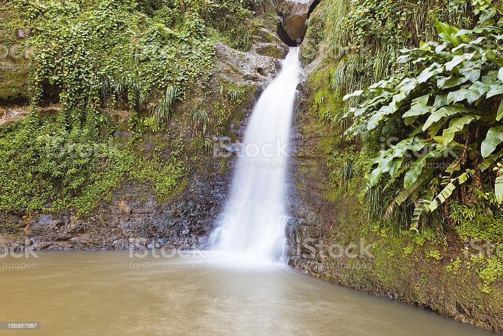 Constantine Falls, Grenada royalty-free stock photo