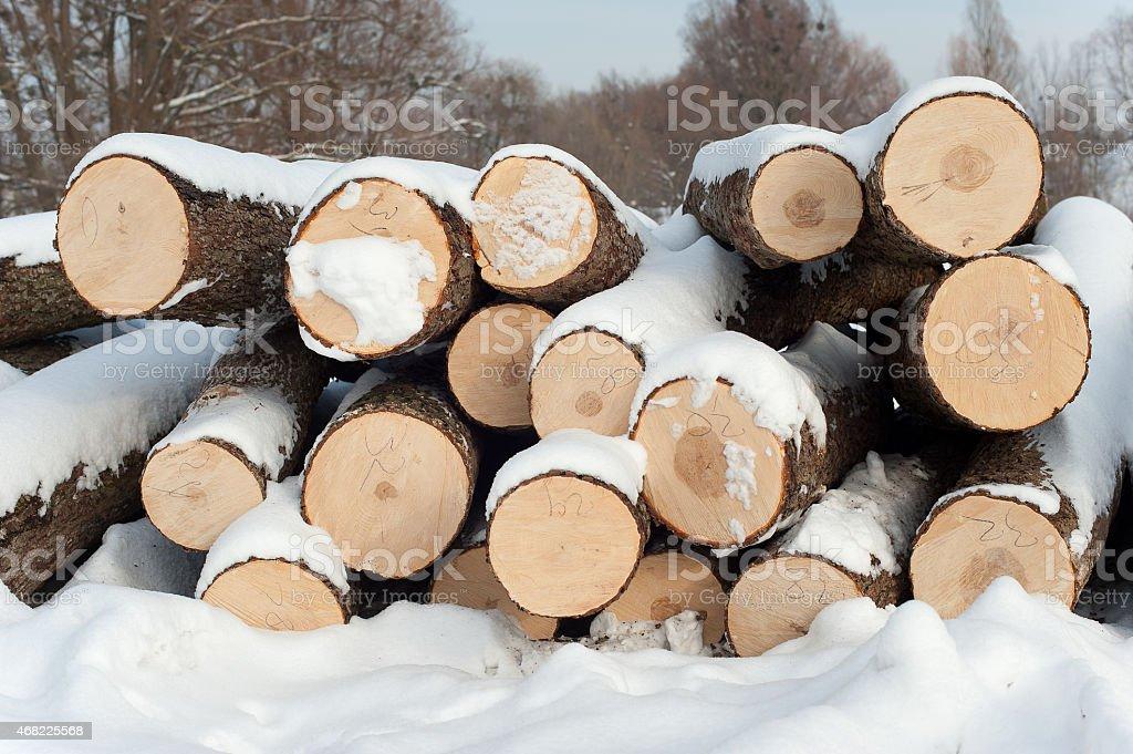 Konstruktion aus Holz Lizenzfreies stock-foto