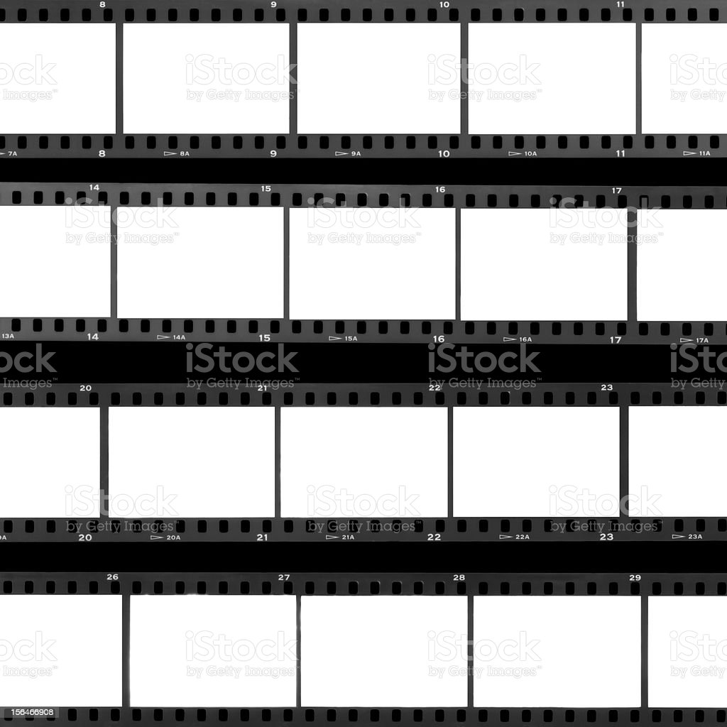 contact sheet blank film frames stock photo