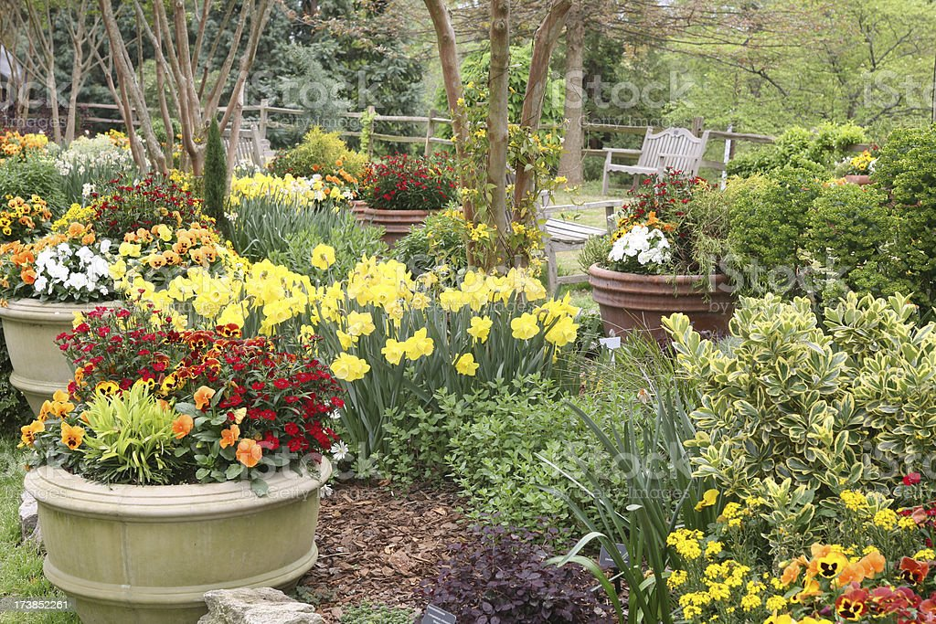 garden scene filled with small planters of brightly colored annuals...