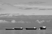 Container ships anchored in ocean