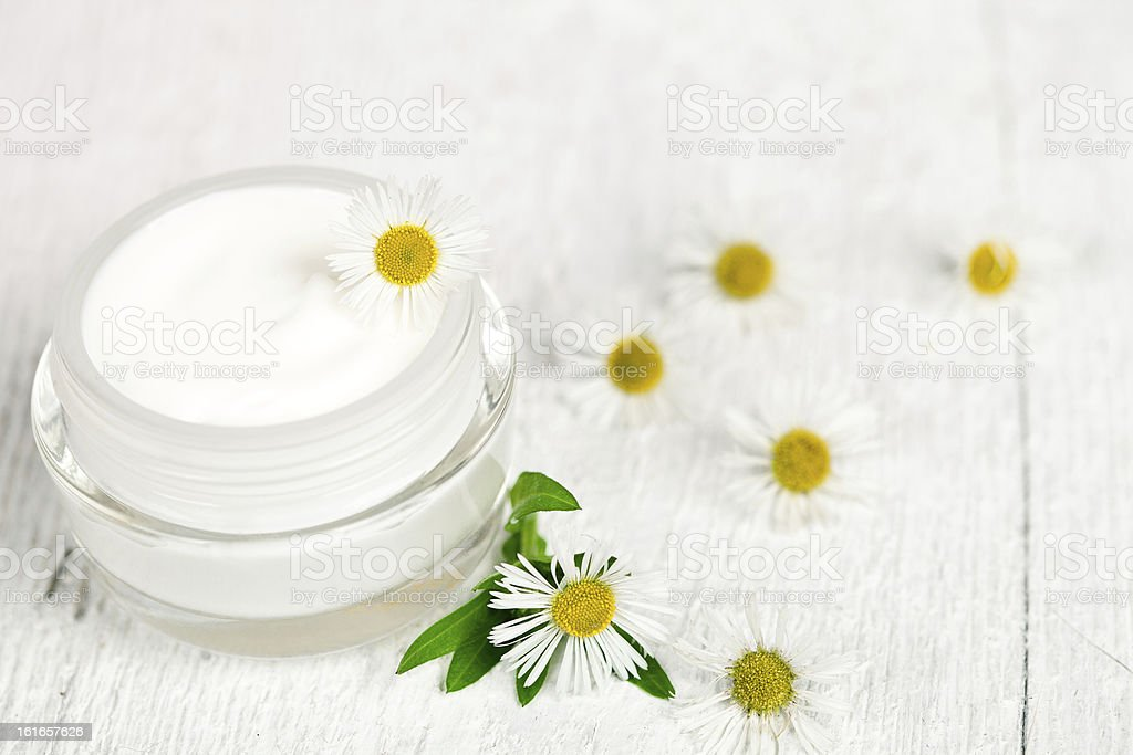container with cream and chamomiles royalty-free stock photo