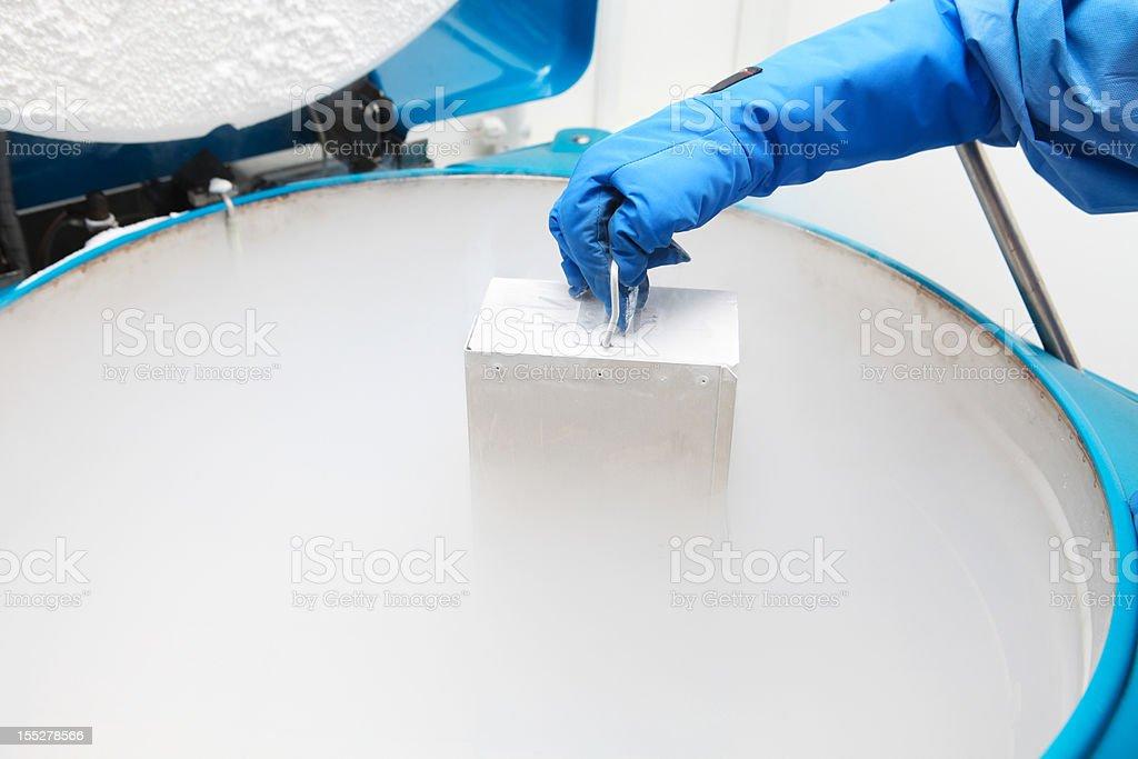 Container with liquid nitrogen stock photo