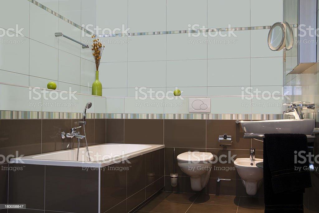 Contemporary Bathroom royalty-free stock photo