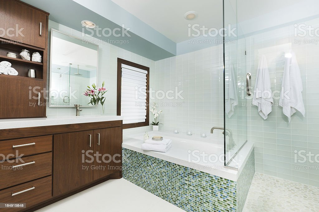 Contemporary Home Bathroom with Shower Stall, Tub and Vanity stock photo