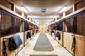 Contemporary horse stalls