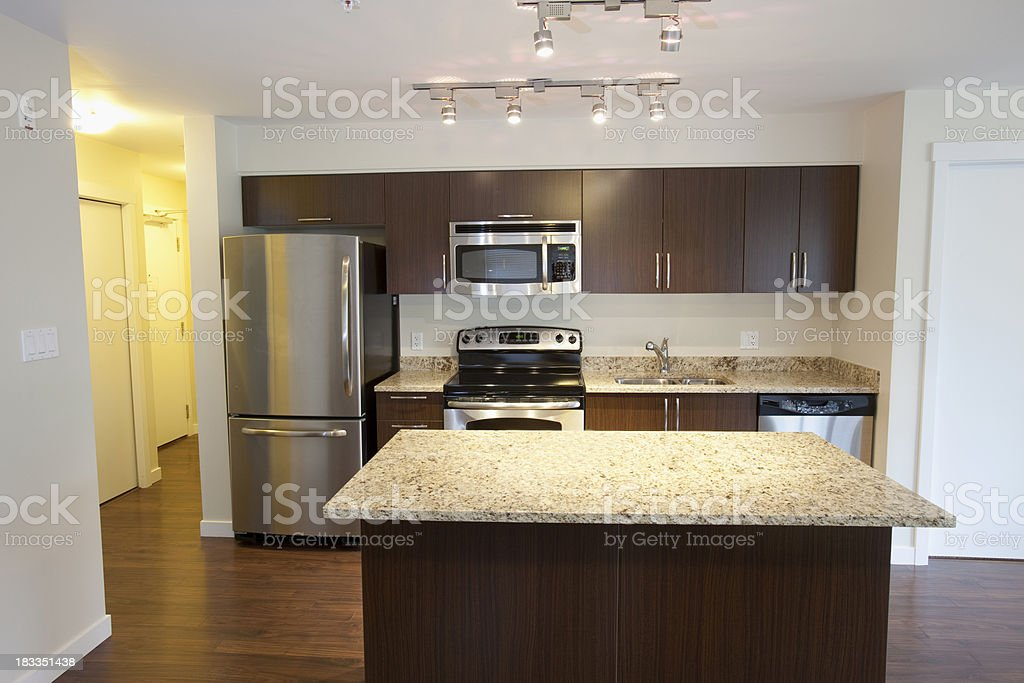 Contemporary kitchen in apartment royalty-free stock photo