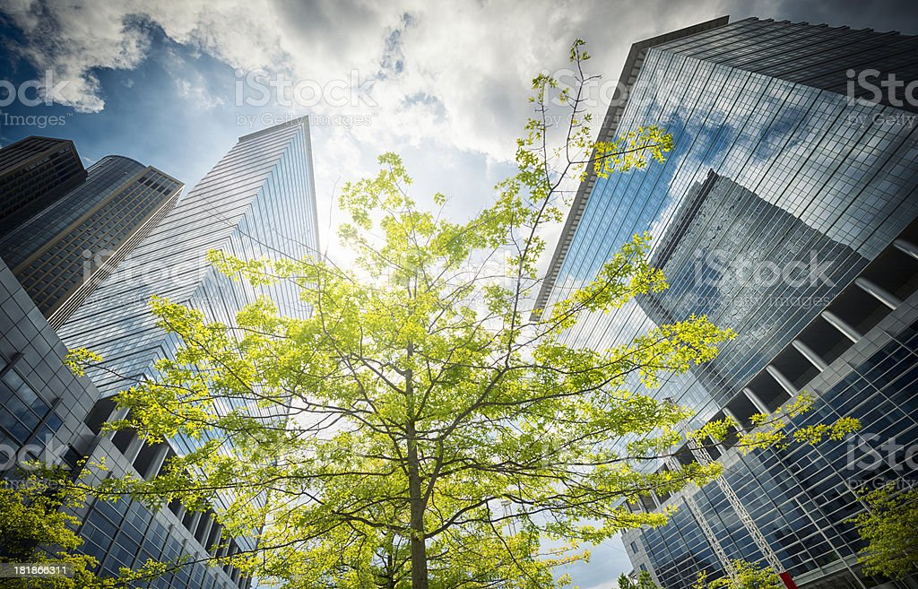 Contemporary office building in spring royalty-free stock photo