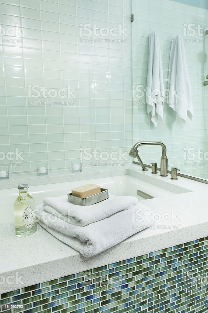 Contemporary Residential Bathroom with Shower Stall and Bath Tub Vt royalty-free stock photo