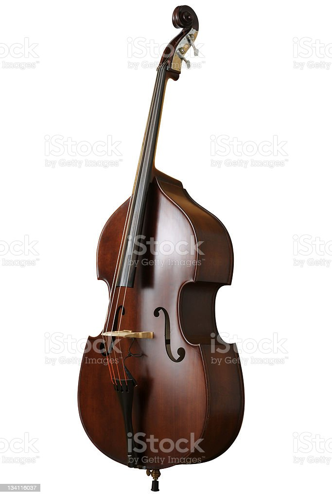 Contrabass isolated against a white background stock photo