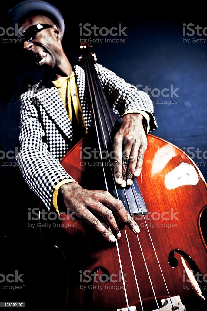 Contrabassist royalty-free stock photo