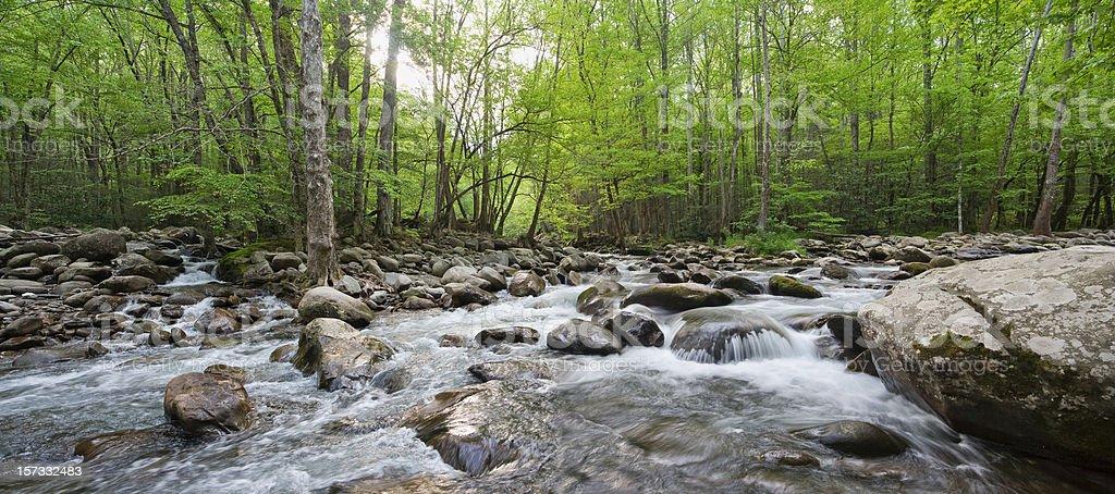 Converging Creeks Panorama royalty-free stock photo