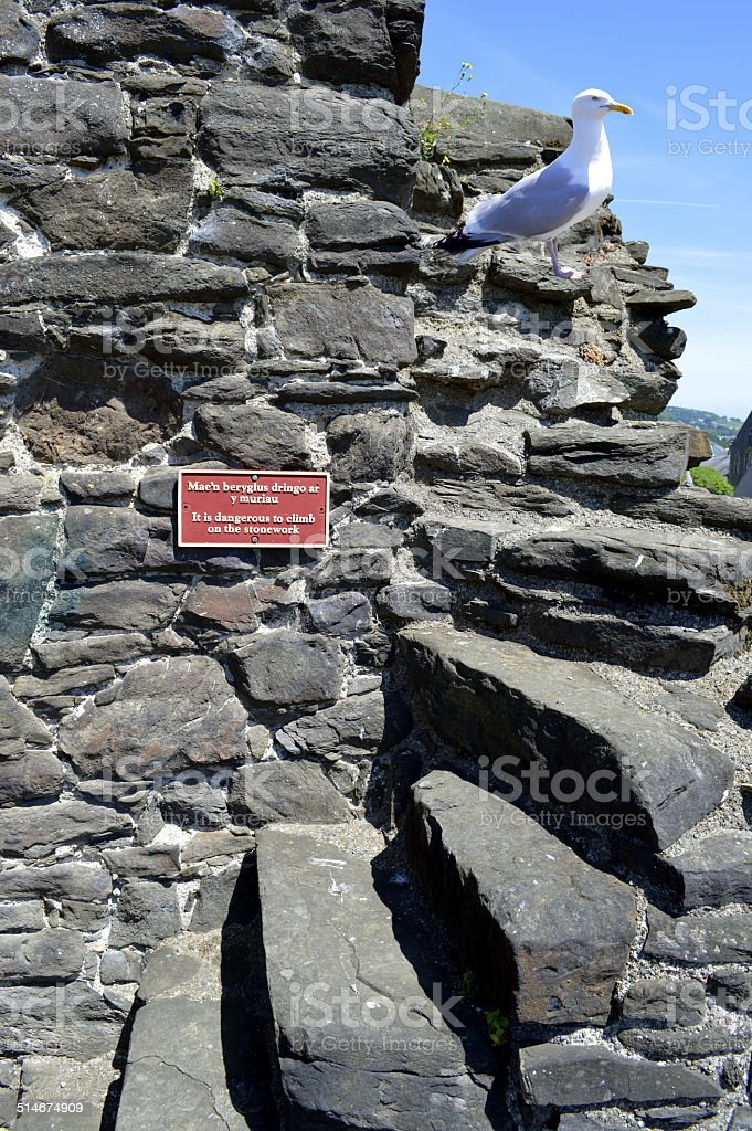 Conwy Wall in Wales stock photo