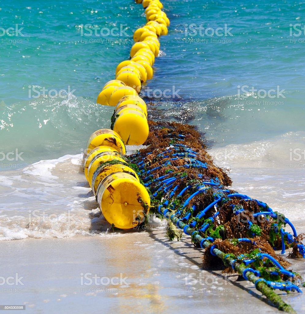 Coogee Beach Shark Net: Western Australia stock photo
